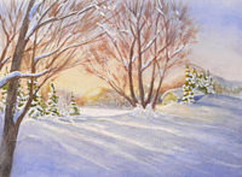 Winters Back Yard by Mary Levingston