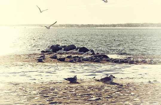 Karol Livote - Winters Chill At The Beach
