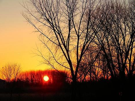 Winter's Dawn by Linda Gonzalez