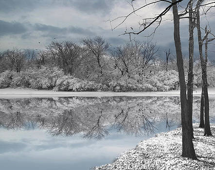 Winters Delight 6  by Cedric Hampton