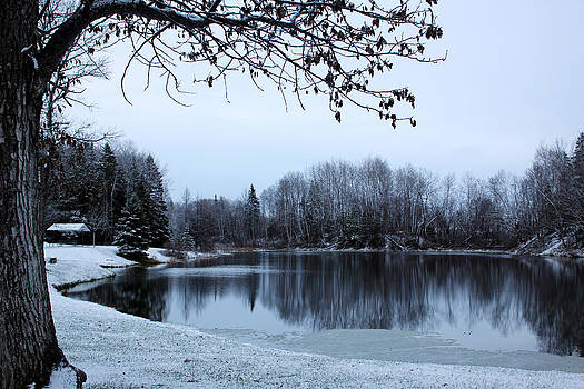 Winter's Dream by Sherry Hudson