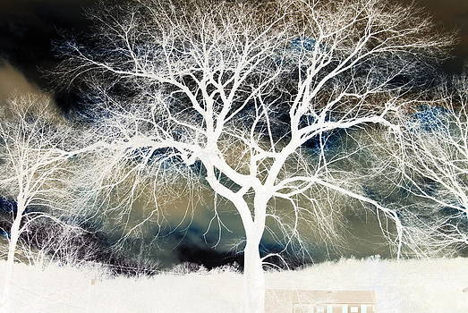 Winters End by Lindy Whiton