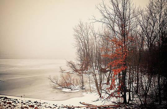 Winters frozen lake by Dick Wood