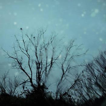 Winter's Kiss by Sharon Kalstek-Coty