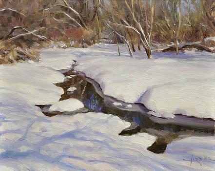 Winter's Mirror by Scott Harding