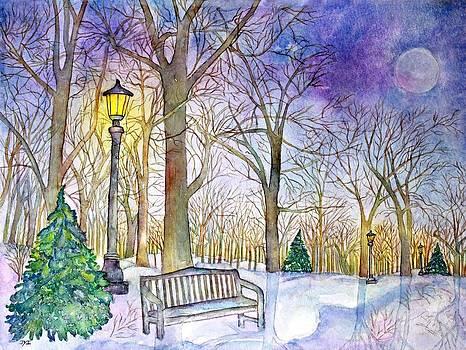 Winter's Night by Janet Immordino