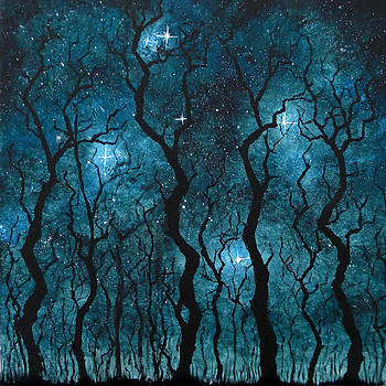 Winter's Night by Sabrina Zbasnik