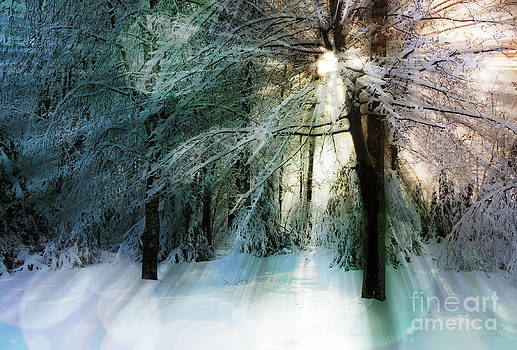 Winter's Rays by Deena Athans
