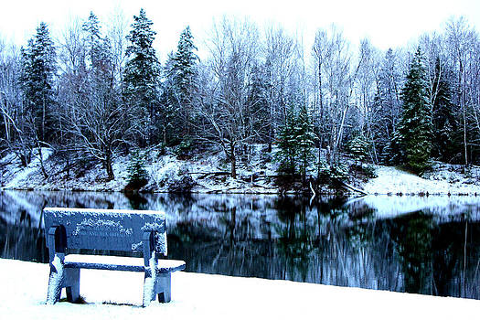 Winter's Solace by Sherry Hudson