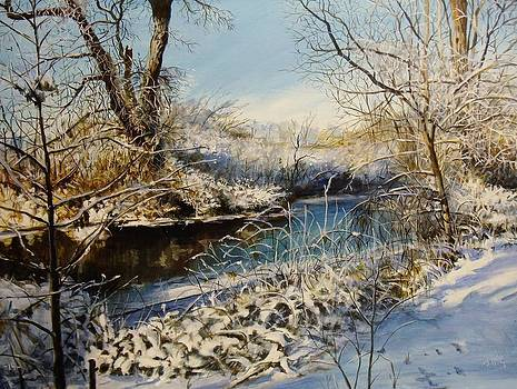 Winter's Touch by William Brody