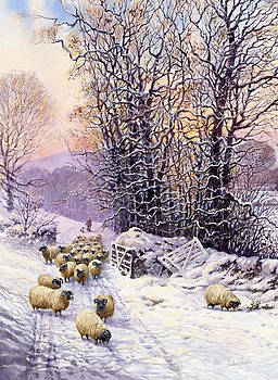 Anthony Forster - Winter