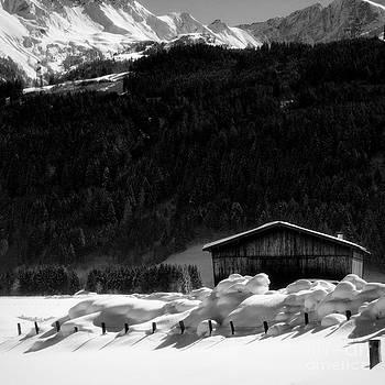 Wintertime by Anita Kovacevic
