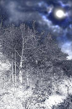 Nina Fosdick - Wintery Moon