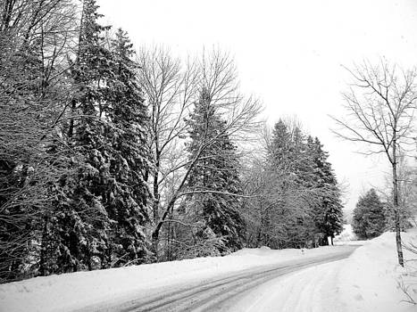 Wintery Road by Tanis Crooks