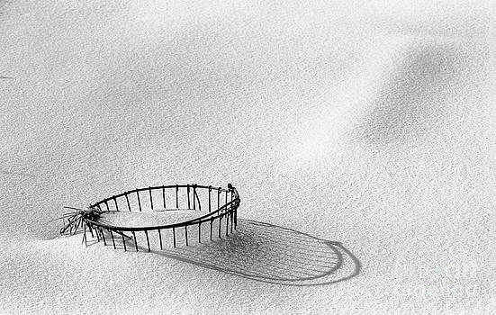 Wire Basket in Snow by Cindi Ressler