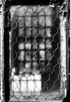 Robin Mahboeb - wire