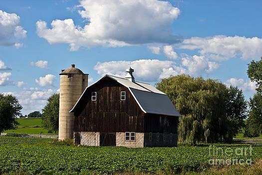 Wisconsin Old Barn 11 by Ms Judi