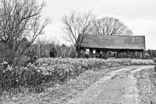 Ms Judi - Wisconsin Old Barn 2 Black and White