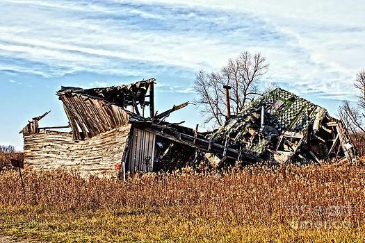 Ms Judi - Wisconsin Old Barn 6