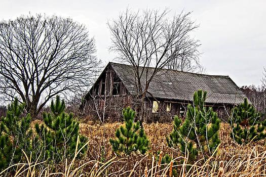 Ms Judi - Wisconsin Old Barn 9