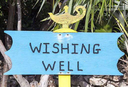 Ramunas Bruzas - Wishing Well