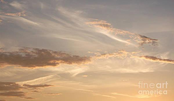 Wispy Sunset by Debi Dmytryshyn