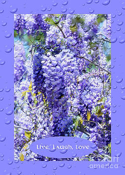Wisteria Inspirational Art by Eva Thomas