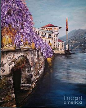 Wisteria While In Italy by Katie Adkins