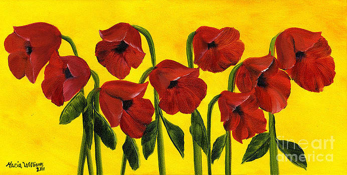 Wistful Poppies by Maria Williams