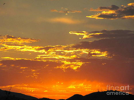 With Love from Sparks NV by Phyllis Kaltenbach