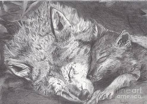Wolf and Pup Napping by Celia Fedak