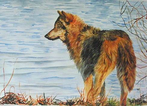 Wolf By The Water by Kristina Delossantos