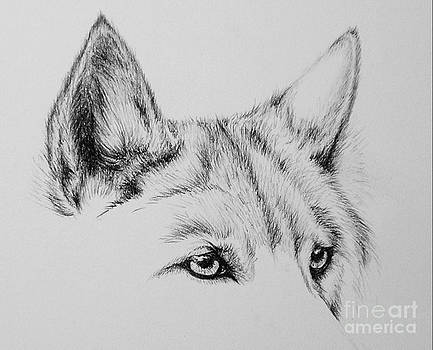 Wolf Eyes by Catherine Howley