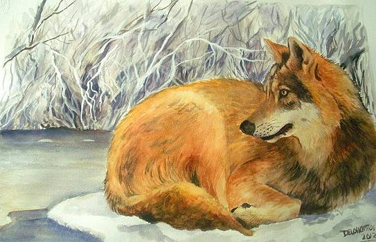 Wolf In Winterland Scene by Kristina Delossantos