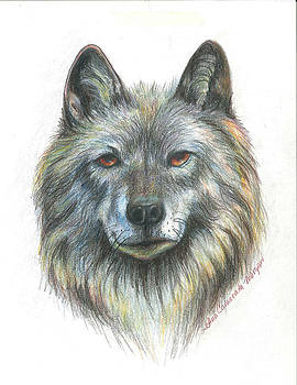 Wolf by JoAnn Morgan Smith