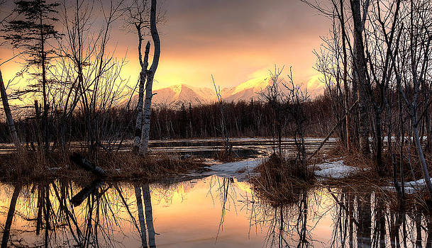 Wolf Lake Alpenglow by Emily Henriques
