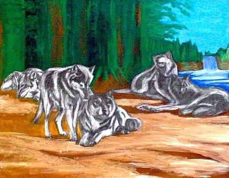 Wolf pack by Lynette  Swart