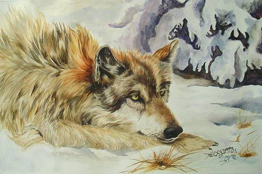 Wolf Resting by Kristina Delossantos