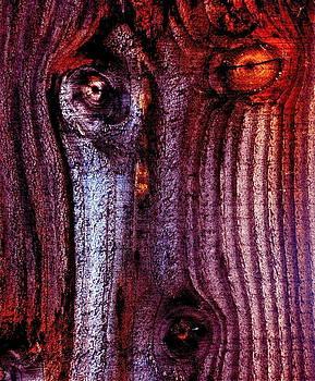 David Flitman - wolf spirit