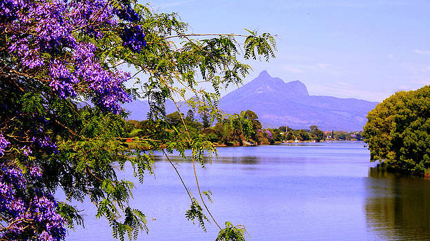 Wollumbin Spring by Kevin Perandis