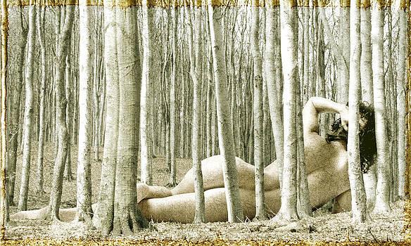 Woman among Trees by Ervin Hajdu