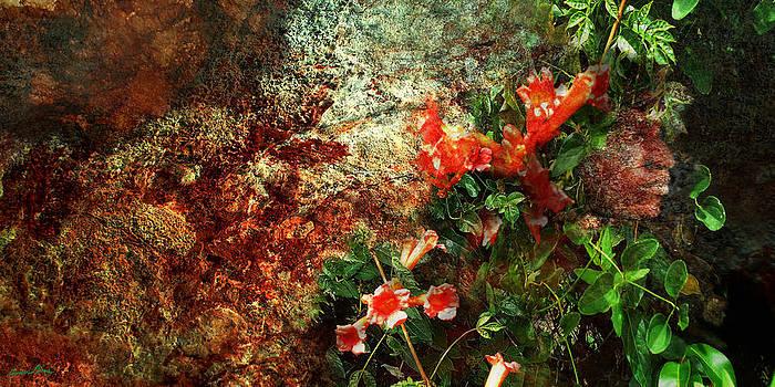 Women Of Nature by Aaron Pierre Pines
