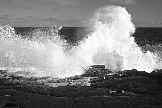 Venetia Featherstone-Witty - Wonderful White Waves