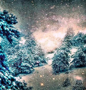 Wonderland by Dani Stites