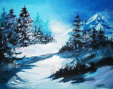 Wonders of Winter by Al Brown