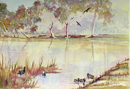 Wonga Wetlands N.S.W. Australia by Audrey Russill