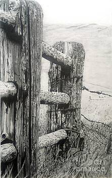 Wood and Wire by Jackie Mestrom