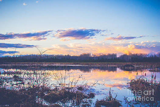 Alanna DPhoto - Wood Buffalo Sunset