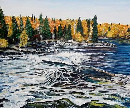 Wood Falls 2 by Marilyn  McNish