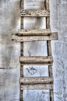 Wood ladder by Paulina Mallard